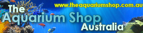 theaquariumshop
